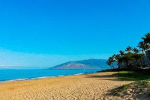 Garden Tour Raffle Prize Maui Vacation